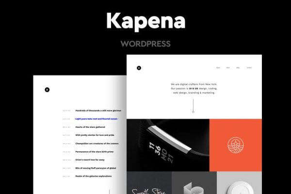 Kapena -  Minimal Portföy WordPress Temasısı