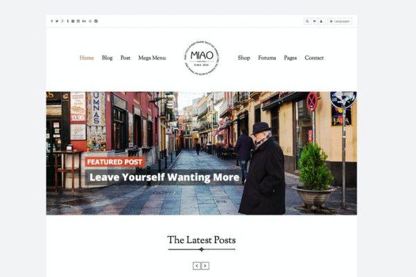 Miao -  Temiz Blog ve Mağaza WordPress Temasısı