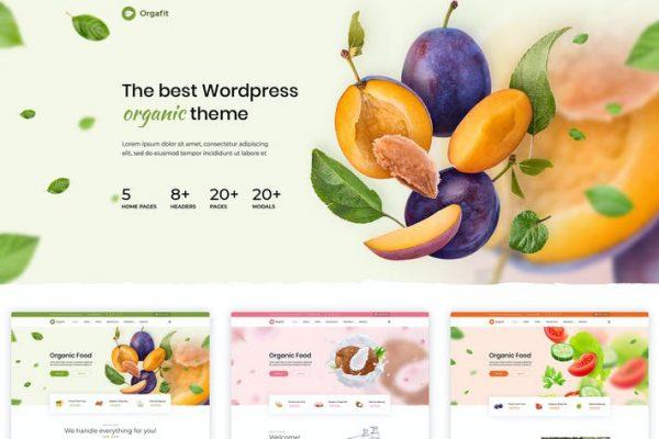 OrgaFit -  Organik ve Sağlık WordPress Temasısı