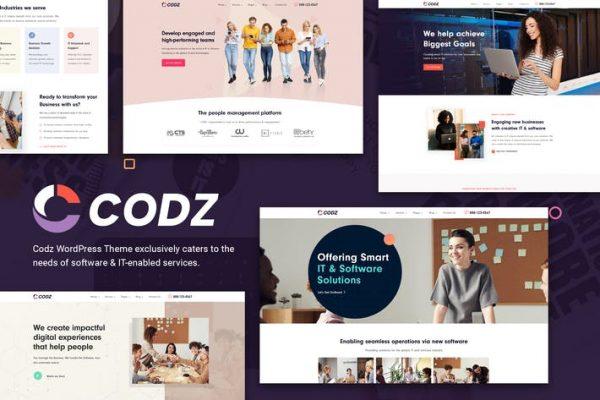 Codz - Yazılım ve Bilişim Hizmetleri Temasısı