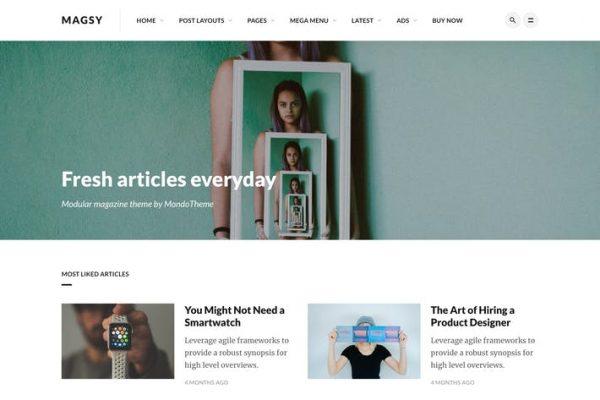 Magsy - Modüler Dergi ve Blog Temasısı