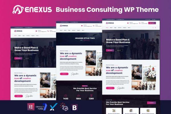 Enexus - Danışmanlık İş Elementor WordPress