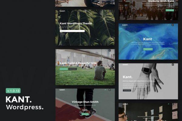 Kant -  Yeni Başlayanlar için Çok Amaçlı WordPress Temasısı