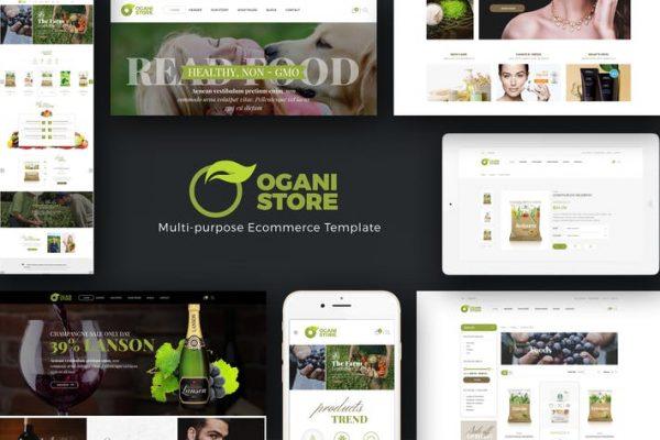Ogani - WooCommerce için Organik Gıda Mağazası Temasısı