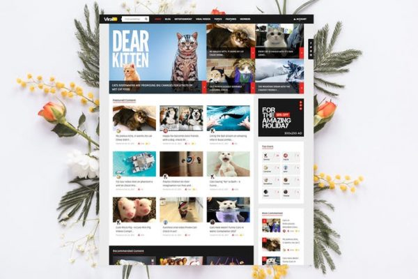 ViralVideo - Kullanıcı Üyelik Haberleri / Dergi Temasısı