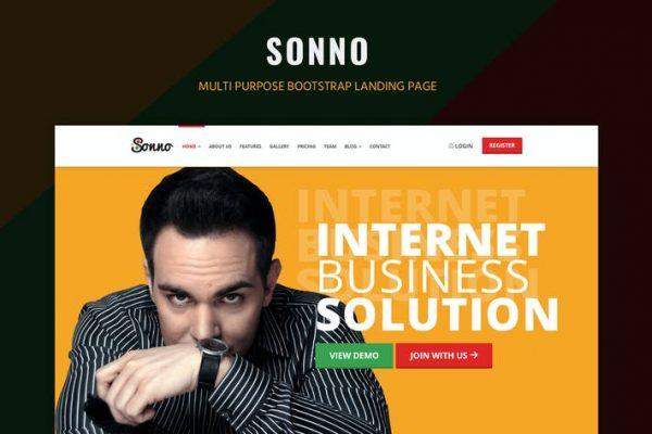 Sonno -  Başlangıç Pazarlama Açılış Sayfası WP Temasısı