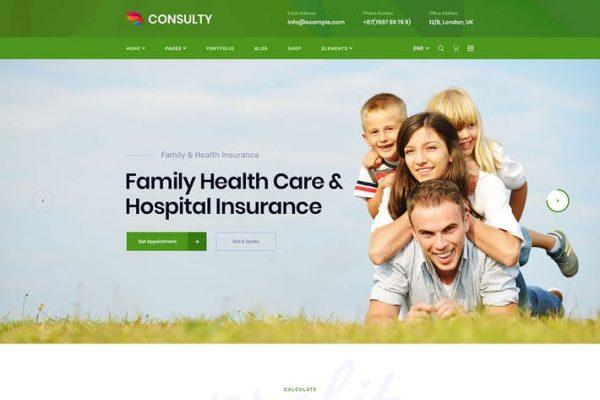 Consulty - İşletme Finansı WordPress Temasısı