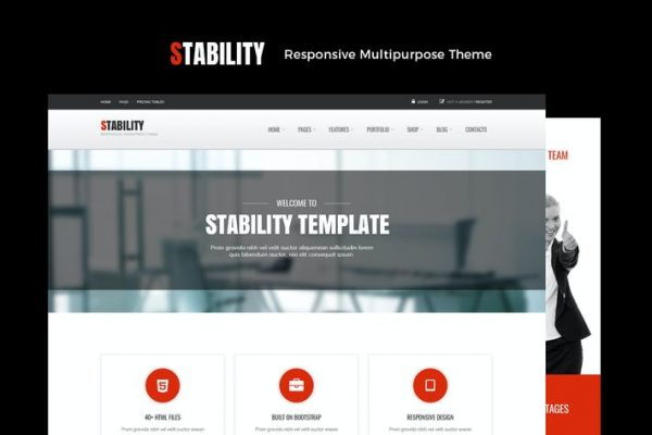 Stability Responsive MultiPurpose WordPress  Teması