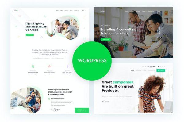 Gullu - Ajans ve Çok Amaçlı WordPress Temasısı