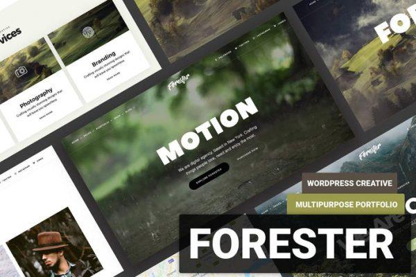 Elementor Onepage Portfolio WordPress  -  ormancı