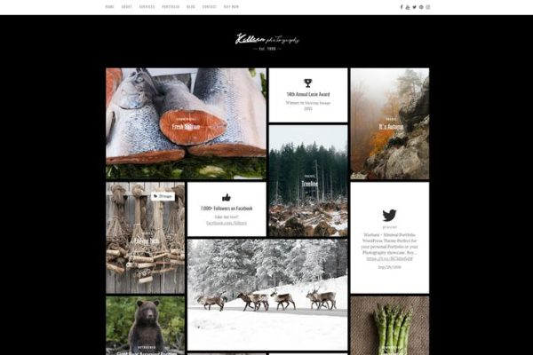 Killeen -  Çağdaş Portföy WordPress Temasısı