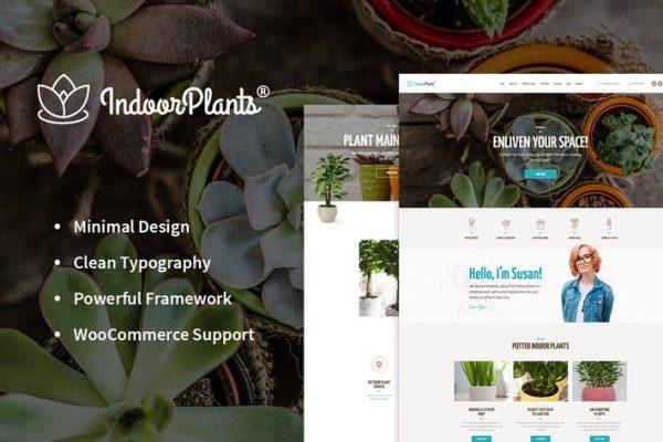 Indoor Plants - Ev bitkileri mağazası ve Bahçe WP
