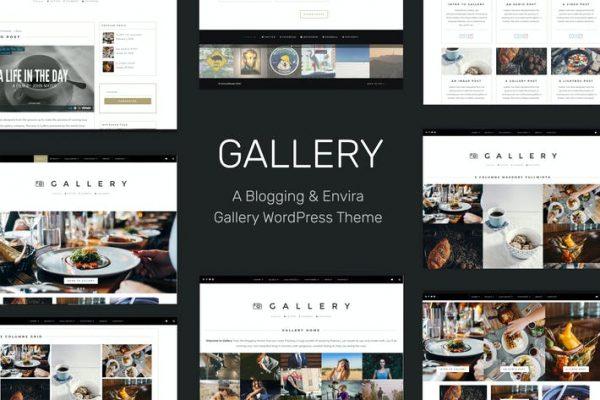 Gallery -  Bloglama ve Envira Galerisi WordPress Temasısı