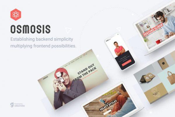 Osmosis - Duyarlı Çok Amaçlı WordPress Temasısı