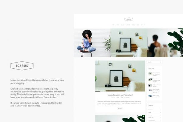 Icarus - Kişisel Blog WordPress Temasısı