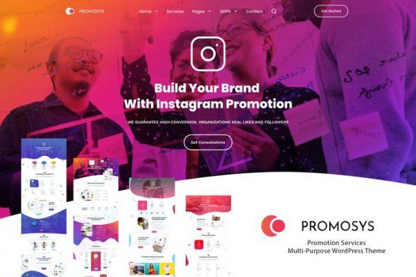 PromoSys Promotion Services Teması