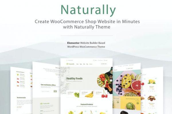 Elementor WooCommerce WordPress -  doğal olarak