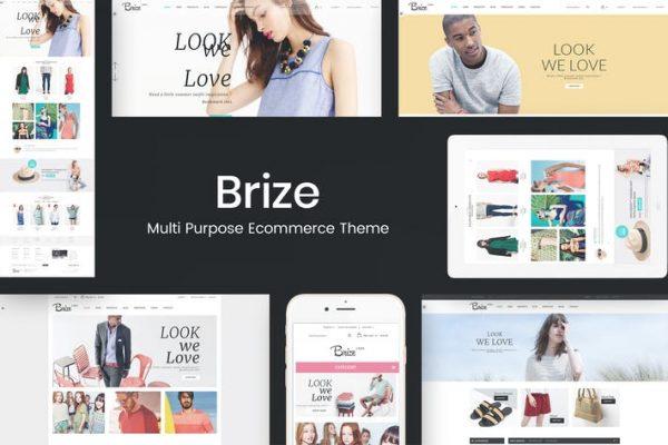 Brize -  Duyarlı WooCommerce Moda Temasısı
