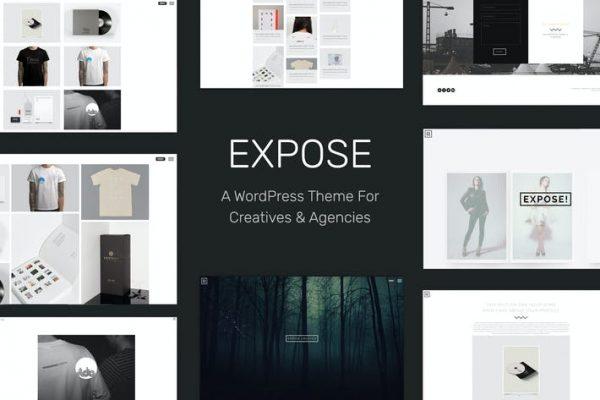 EXPOSE - Reklamlar ve Ajans WordPress Temasısı