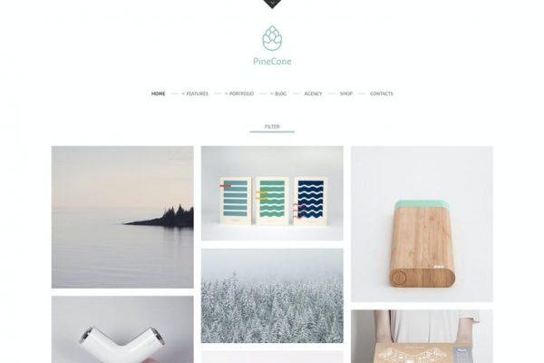 PineCone -  Ajans için Yaratıcı Portföy ve Blog