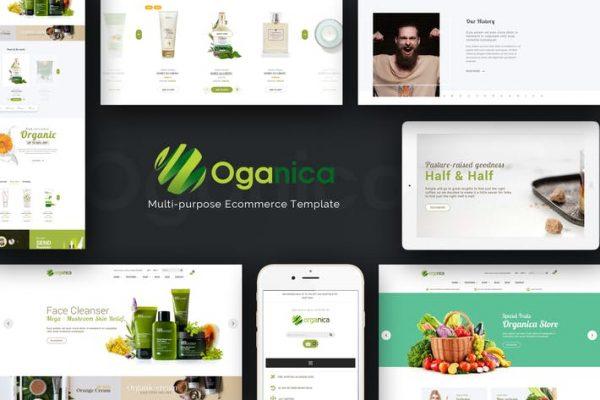 Organica - Duyarlı WooCommerce WordPress Temasısı