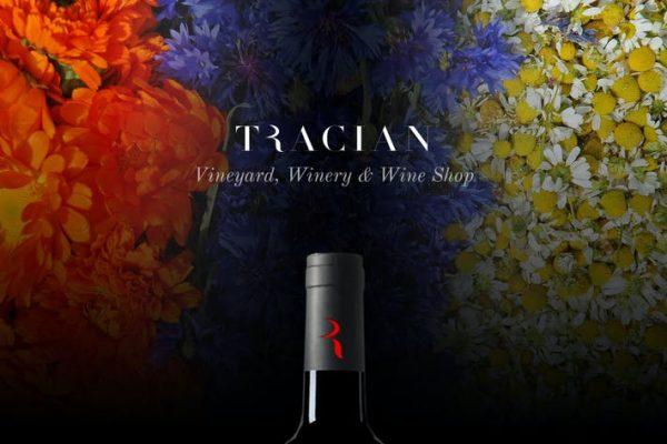 Tracian - Şarap WordPress Temasısı