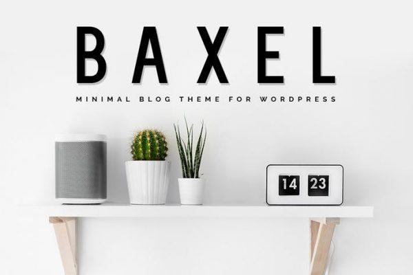 Baxel - Minimalist WordPress Blog Temasısı